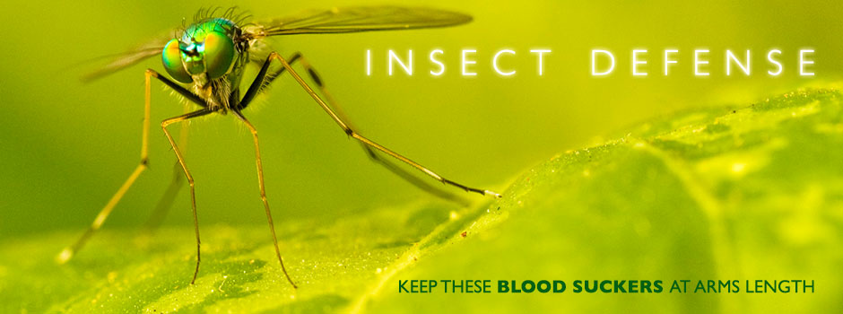 banner_insect_defense