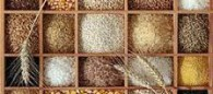 Ancient-grains-resized