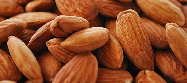 Almonds_macro_resized