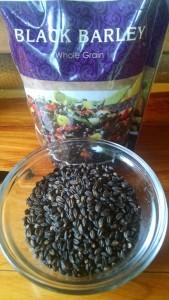 barley2 (1)